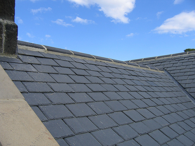 Eco-Friendly Roofing Options