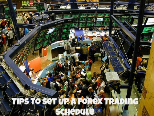 Set up forex trading company
