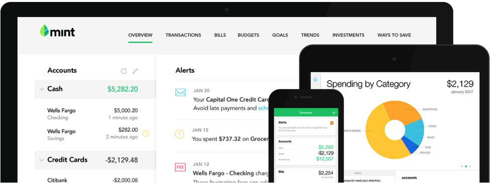 how to set a budget with mint