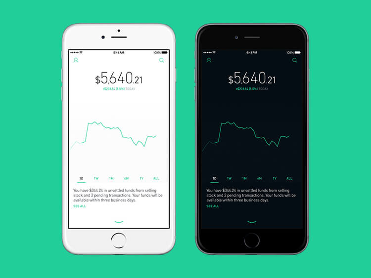 Robinhood Bank Transfer